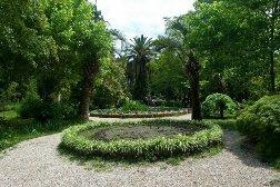 Ботанический сад Абхазия