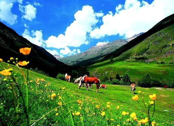 Прекрасная природа Австрии